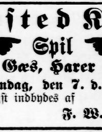 Avisannonce i Hejmdal, 5. november 1909